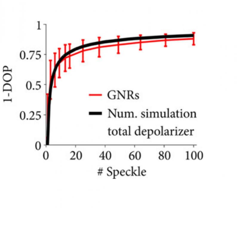 Quantitative depolarization measurements of the retinal pigment epithelium